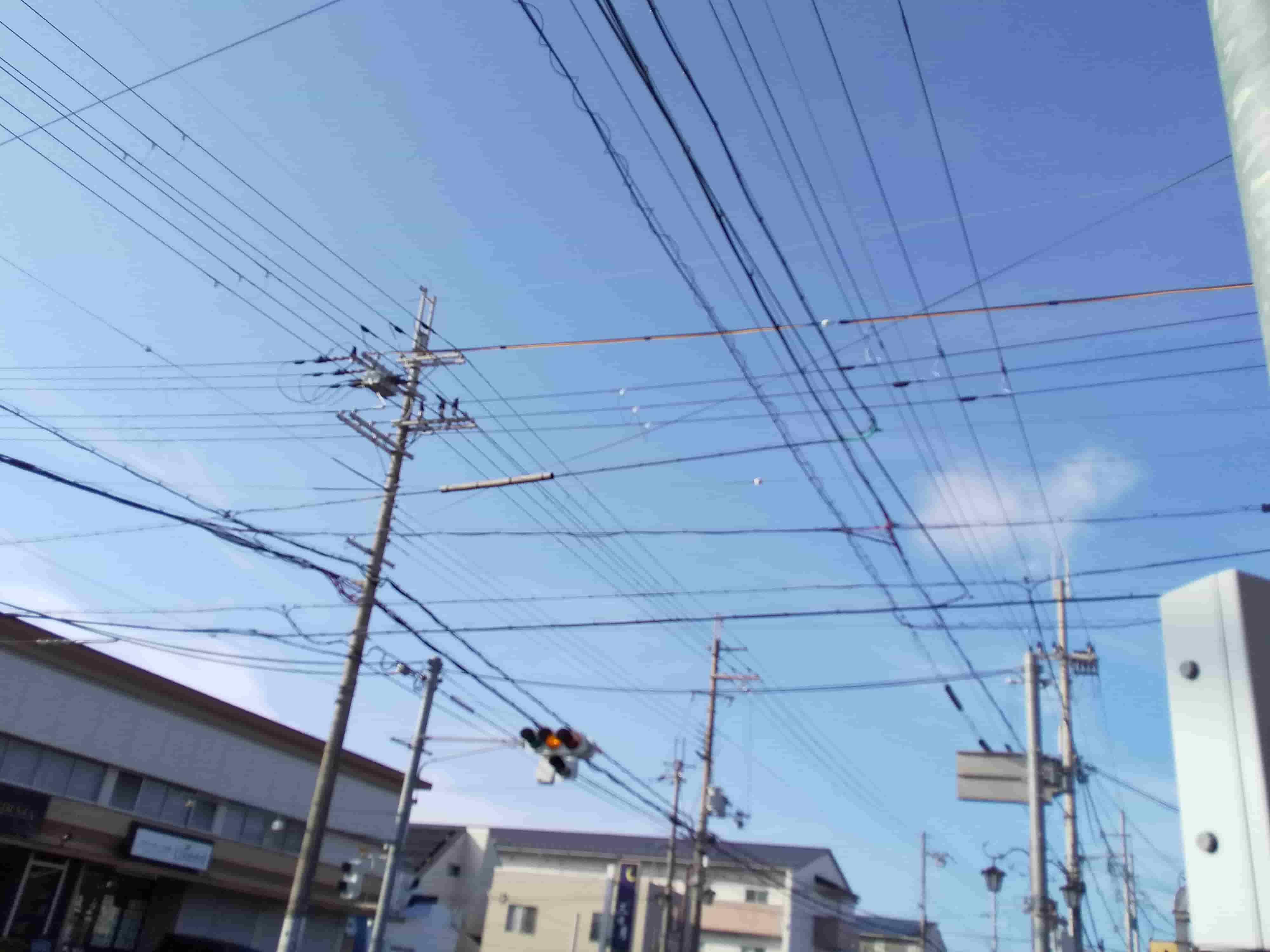 電線写真.JPG